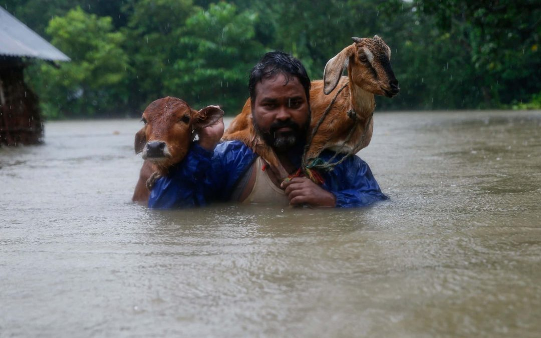 Nepal Flooding:  Help Today, Help Tomorrow