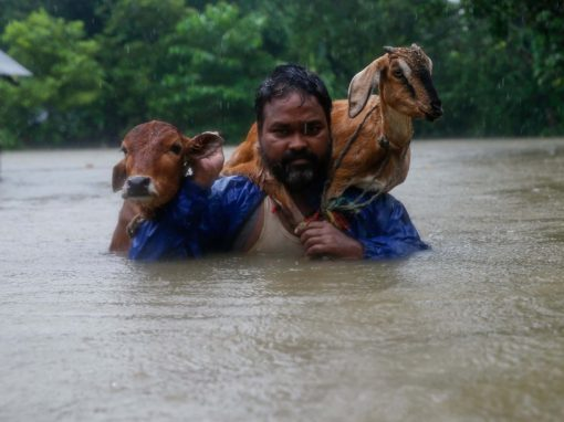 Nepal Flooding : Help for Today, Help for Tomorrow